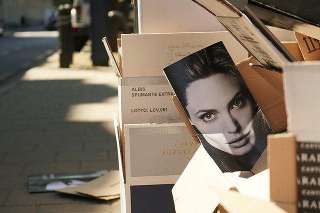 Angelina Jolie Sidewalk Cardboard